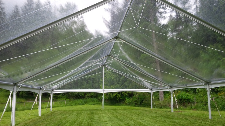 40 x 40 Clear Top Free-Standing Tent