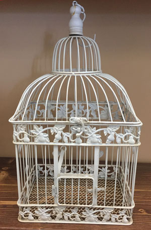 Large Square Bird Cage Wedding Rental